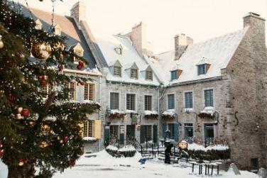 place royale winter